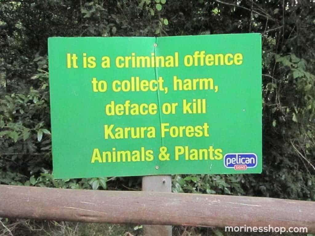 Warning about not defacing Karura forest