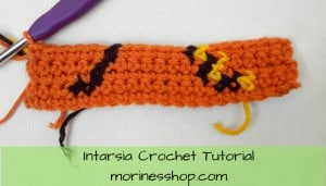 A well detailed intarsia crochet tutorial which includes photos tutorials, tips and tricks and how to read a pattern from a graph #IntarsiaCrochet #TapestryCrochet #IntarsiaCrochetTutorial #CrochetTutorial #CrochetColorWork